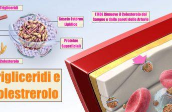 dieta per il colesterolo alto uomo